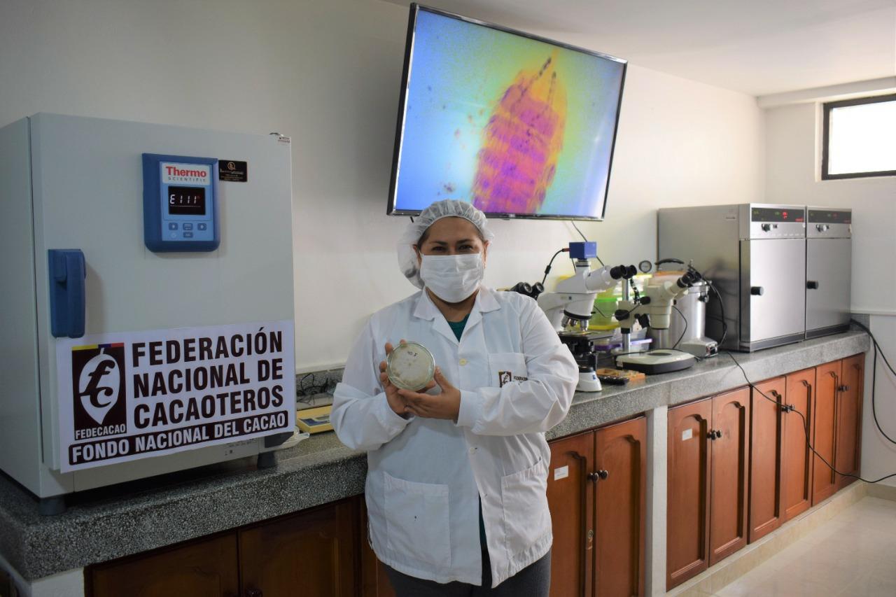 FEDECACAO formaliza ante el RNC su colección de microorganismos para estudios científicos en cacao